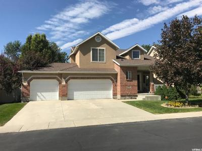 Draper Single Family Home For Sale: 11822 S Sunrise View Dr