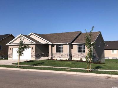 Payson Single Family Home For Sale: 521 N 150 W