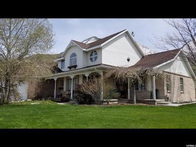 Salem Single Family Home For Sale: 957 S 1700 E