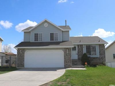 Layton Single Family Home For Sale: 1151 W 2600 N