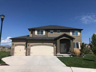 Eagle Mountain Single Family Home For Sale: 4129 E Berkshire Ln N