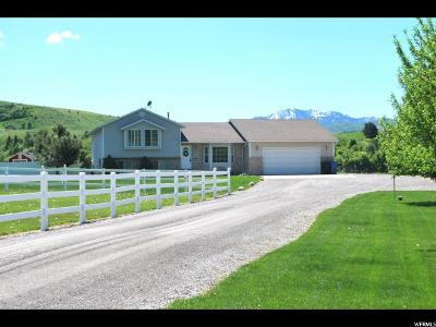 Cache County Single Family Home For Sale: 816 E Canyon Rd