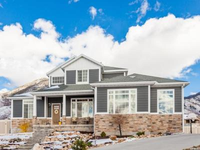 Tooele UT Single Family Home For Sale: $450,000