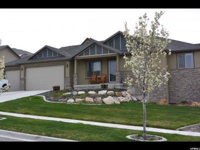 Saratoga Springs Single Family Home For Sale: 2523 S Delphinium Way