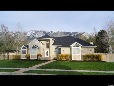 Sandy Single Family Home For Sale: 11901 S Irwin Rd E