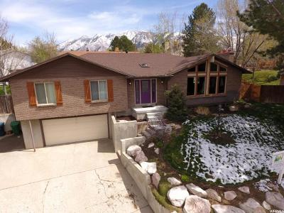 Sandy Single Family Home For Sale: 1166 E Windy Peak Cir S