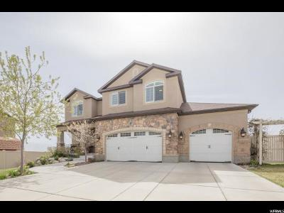 Saratoga Springs Single Family Home For Sale: 417 W Indian Summer Dr