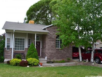Pleasant Grove Single Family Home For Sale: 1243 W 1800 N