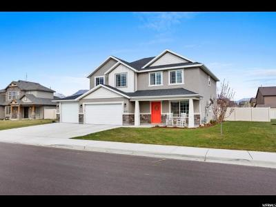 Lehi Single Family Home For Sale: 2045 S Bullrush Pkwy
