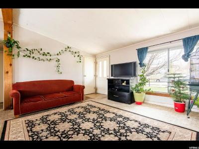 Park City Single Family Home For Sale: 165 E Countryside Cir