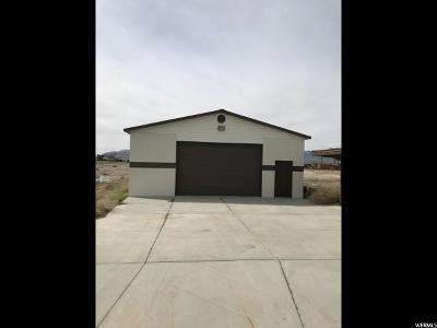 Grantsville Single Family Home For Sale: 650 E Main St