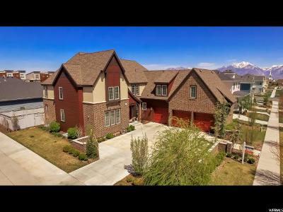 South Jordan Single Family Home For Sale: 4596 W Chenango Ln S