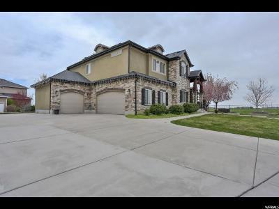 Layton Single Family Home For Sale: 1805 W 400 N