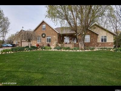 West Jordan Single Family Home For Sale: 5457 W Saddle Mount Cir S