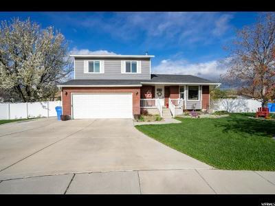 Riverton Single Family Home For Sale: 11872 S Kinney Cir