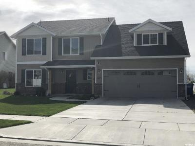Brigham City Single Family Home For Sale: 1077 N 725 W