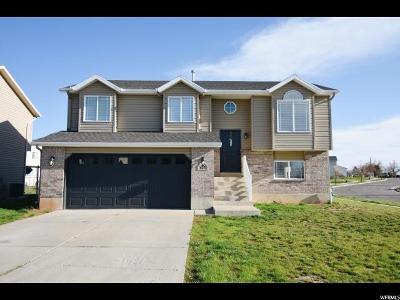 Ogden Single Family Home For Sale: 627 E Canyon Vw