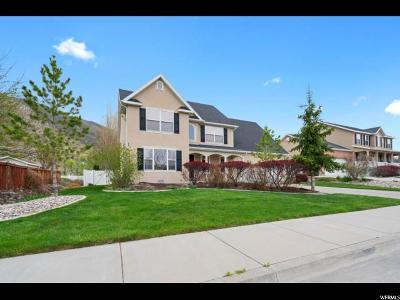 Springville Single Family Home For Sale: 496 N 450 E