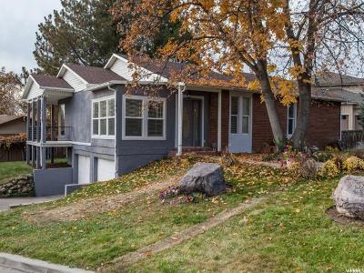 Provo Single Family Home For Sale: 3155 N Mojave Ln E
