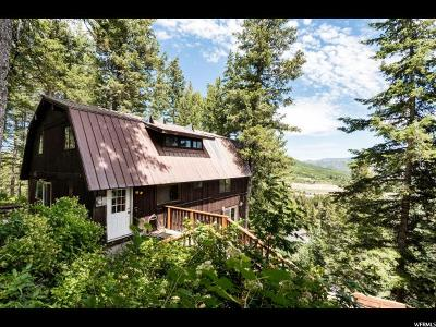 Park City Single Family Home For Sale: 435 Upper Evergreen Dr