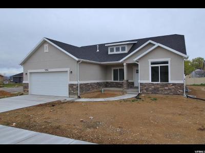 Salem Single Family Home For Sale: 795 E 270 N