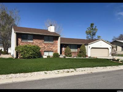 Tremonton Single Family Home For Sale: 1340 S Century Dr #09