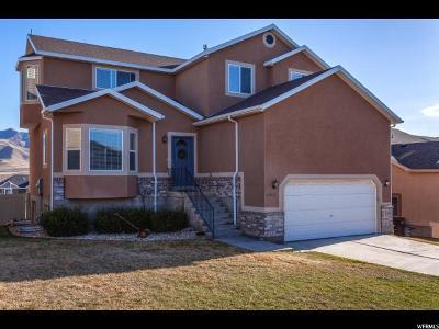 Eagle Mountain Single Family Home For Sale: 4566 E Ponderosa Way