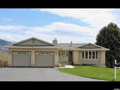 River Heights Single Family Home For Sale: 940 E River Heights Blvd