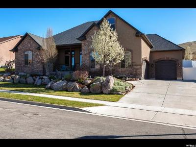 Herriman Single Family Home For Sale: 5441 W Evening Side Dr