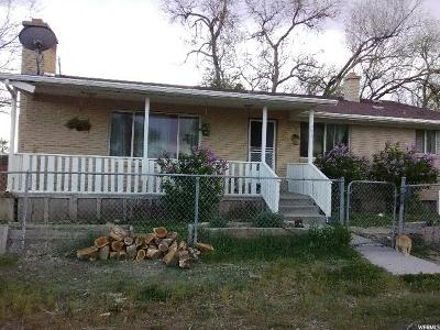 Rush Valley Single Family Home For Sale: 293 W Pine St