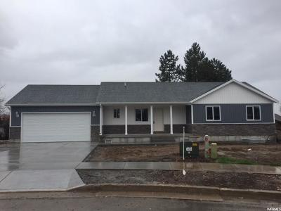 Smithfield Single Family Home For Sale: 276 E 360 S