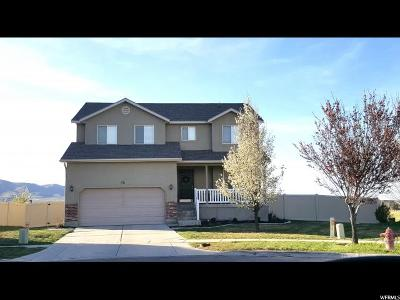 Saratoga Springs Single Family Home For Sale: 791 N Canterbury Ct W