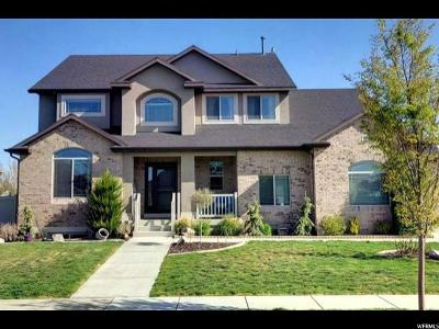 Davis County Single Family Home For Sale: 1302 W 2850 S