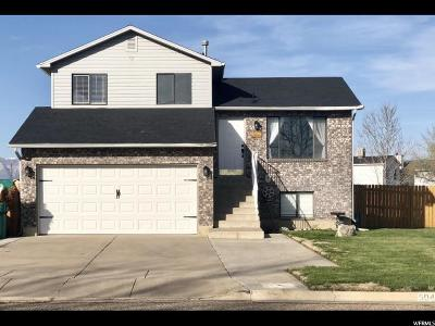 Weber County Single Family Home For Sale: 5048 S 4275 W