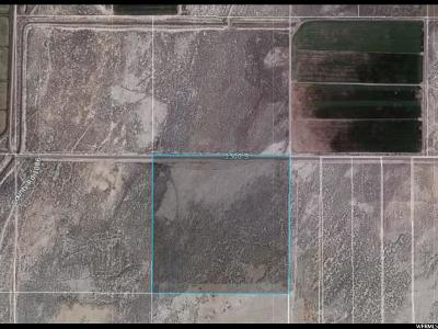 Residential Lots & Land For Sale: 5600 W 3500 S