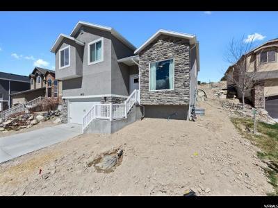 Eagle Mountain Single Family Home For Sale: 3973 Eagle Top Ct