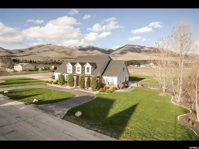 Weber County Single Family Home For Sale: 3874 N 3775 W