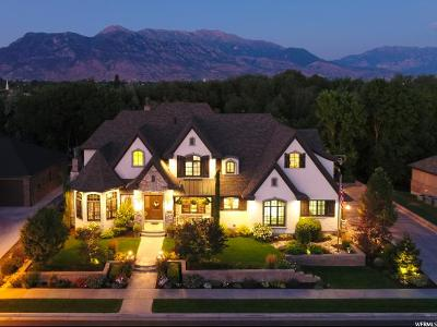 Utah County Single Family Home For Sale: 824 N 700 W