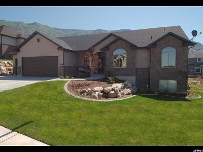 Weber County Single Family Home For Sale: 3668 N 575 E