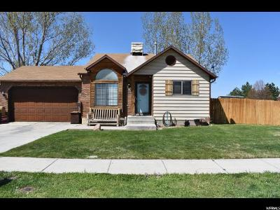 Weber County Single Family Home For Sale: 5389 S 3750 W