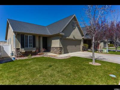 Utah County Single Family Home For Sale: 3650 W Plymouth Rock Cv