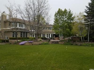 Alpine Single Family Home For Sale: 956 E Sunburst Ln