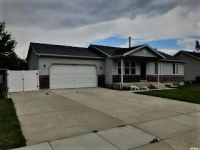 Brigham City Single Family Home For Sale: 667 N 725 W