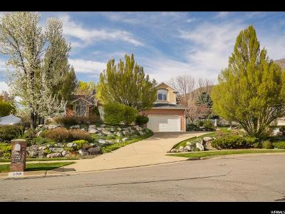 Ogden Single Family Home For Sale: 1784 Shadow Ridge Cir