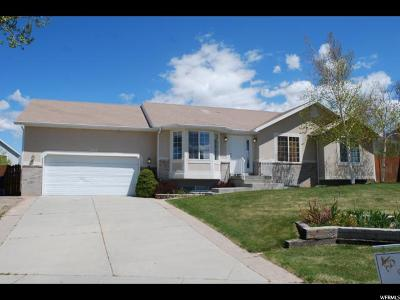 Tooele Single Family Home For Sale: 222 W Julie Ann Ct