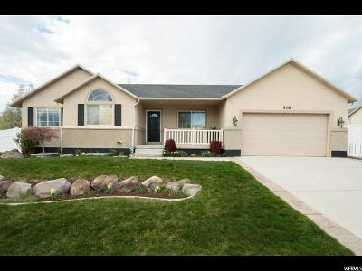 Draper Single Family Home For Sale: 918 W Stephens View Way