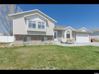 Tremonton Single Family Home For Sale: 536 W 450 N