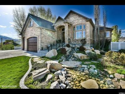 Riverton Single Family Home For Sale: 1763 Mason Ridge Ct