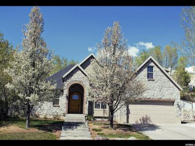 Orem Single Family Home For Sale: 1163 E 1220 N
