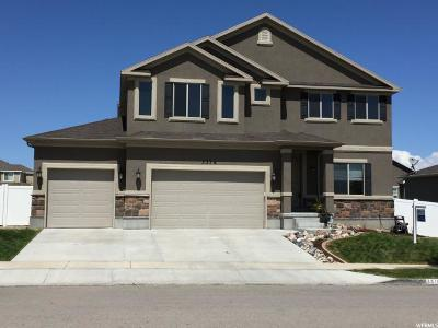 Riverton Single Family Home For Sale: 3376 W Chamonix Way S